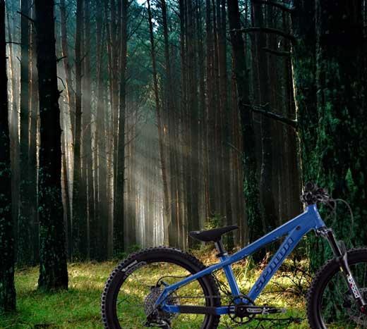 World's Best Kids' Bike   Spawn Cycles